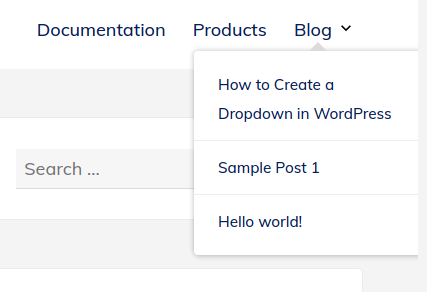 Screenshot of how to check your menu changes on the front end of a WordPress site