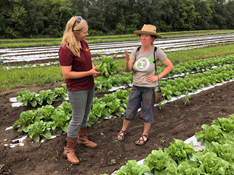 Extension educator, Annalisa Hultberg and farmer, Becca Carlson of Seeds Farm connect in the field.