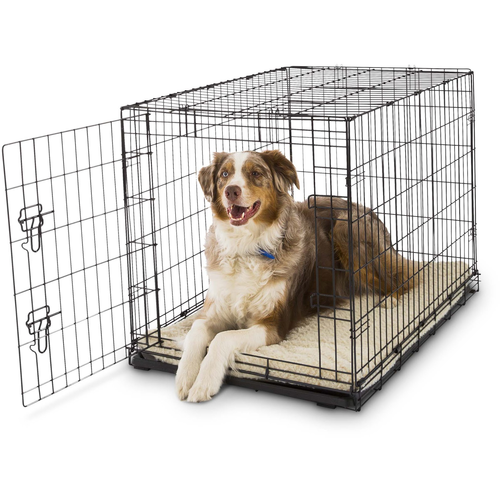 A Guide on Crate Training your Puppy in 2019