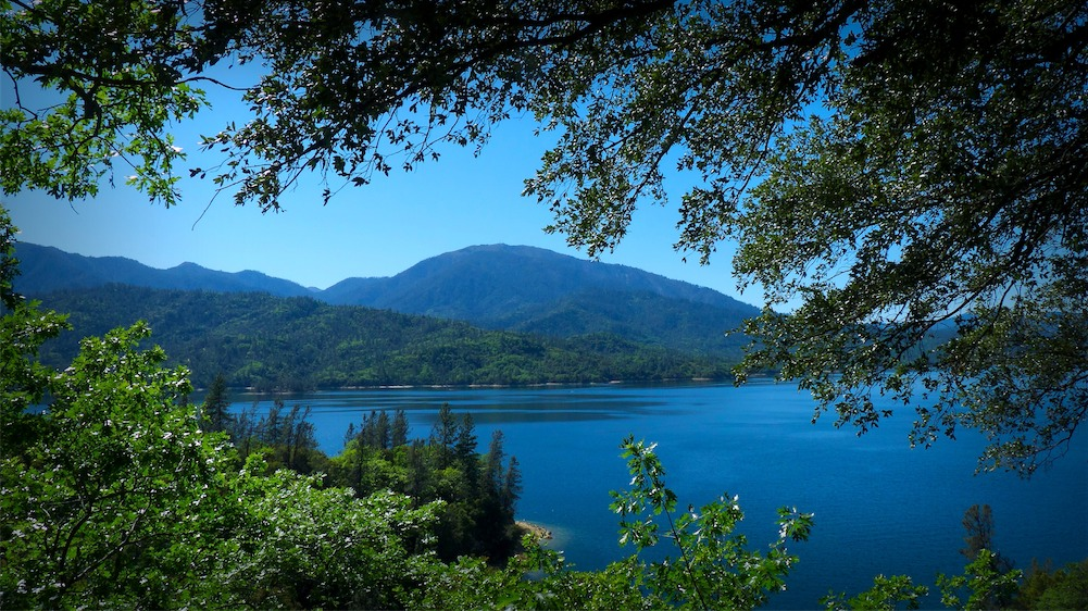 Postcard Whiskeytown View.jpg