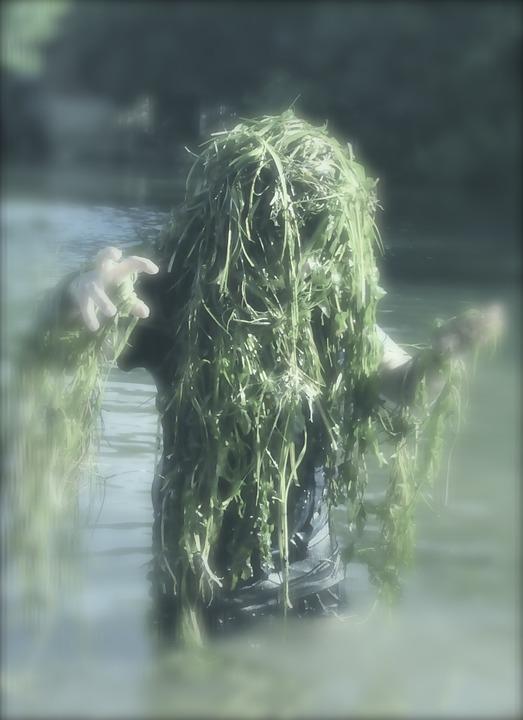 seaweed monser.jpg