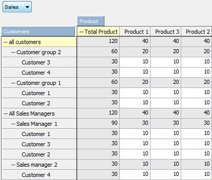 ibm cognos data manager user guide