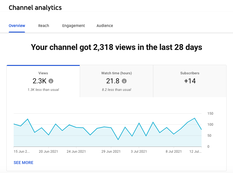 YouTube channel analytics overview