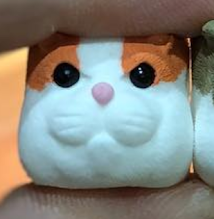 DCcaps - Cat-Dog-Hamster -