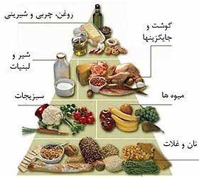 امنیت غذایی - ویکیپدیا، دانشنامهٔ آزاد
