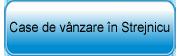 Case de vanzare in Strejnicu aflate in oferta Agentiei Imobiliare Equinox