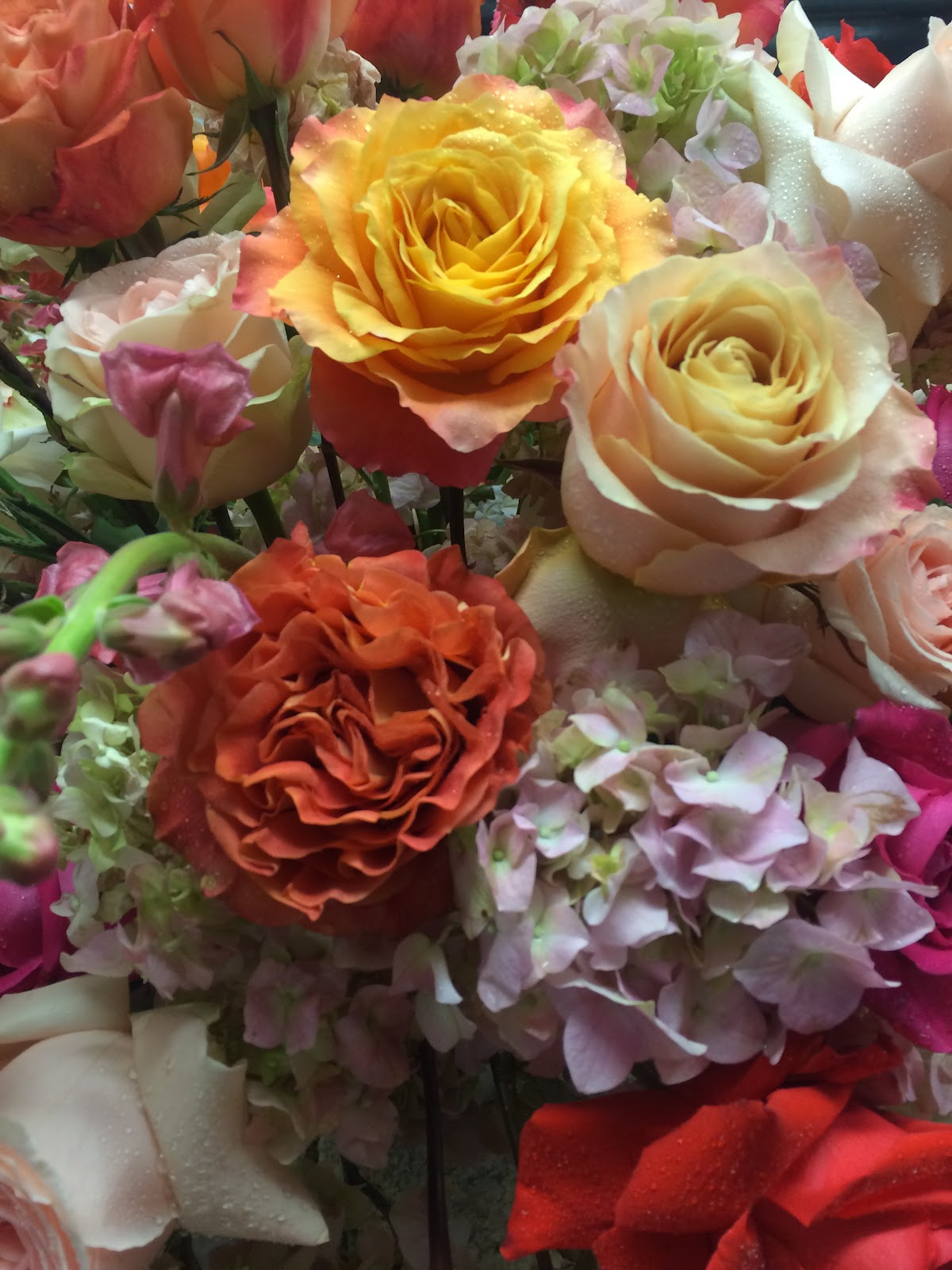 Blog diana gould ltd her flowers included an array of roses in the most beautiful shades as well as gorgeous coral snapdragon lush pink hydrangea and fabulous coral peonies izmirmasajfo