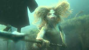 Image result for harry potter mermaid