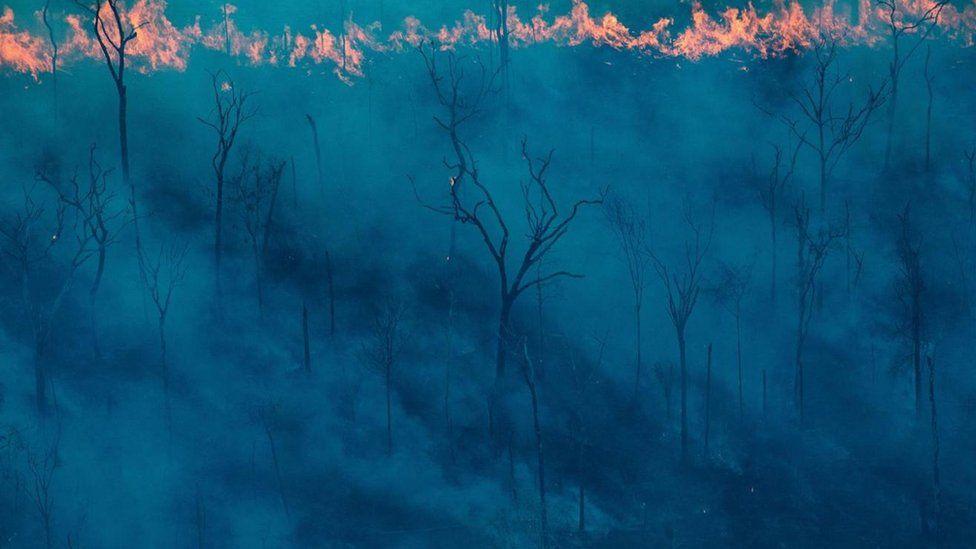Пожежа в Амазонії