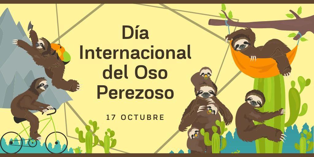 17 octubre dia del osos perezozo.jpg