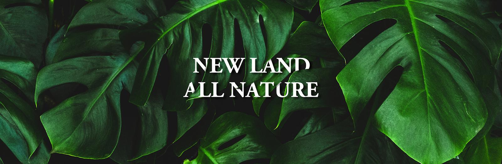 Mỹ phẩm thiên nhiên