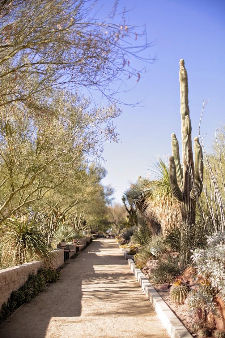 Las Vegas Botanical Gardens.