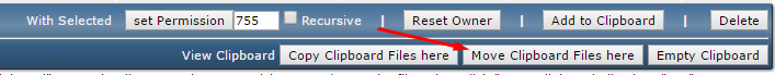 Directadmin move files