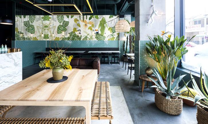 vegetacao-plantas-mesa-ana-luiza-paraiso.jpg