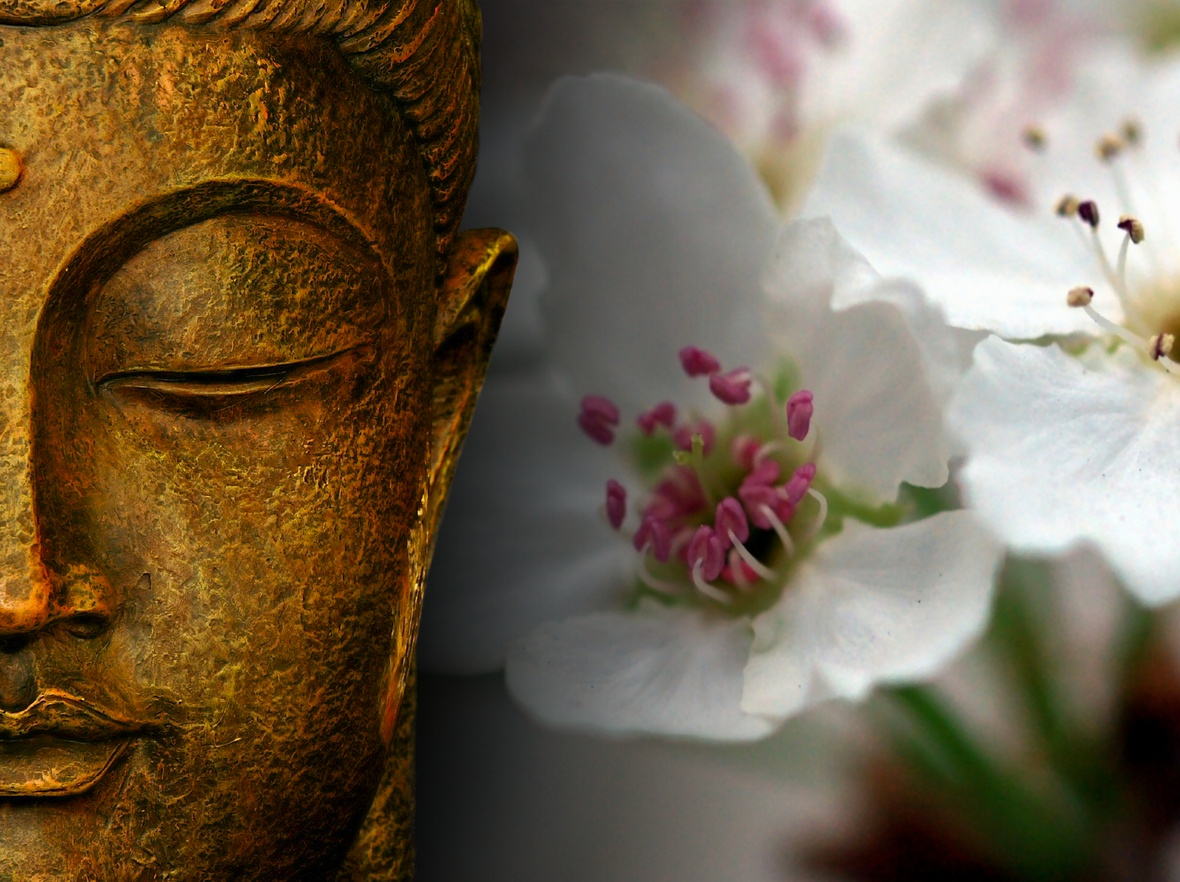 The power of flowers takes one toward spirituality