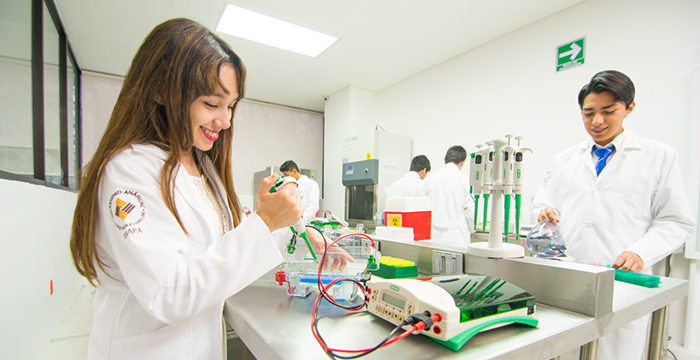 instalaciones-universidad