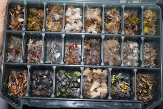 Една от кутиите с мухи на Румен от Перник