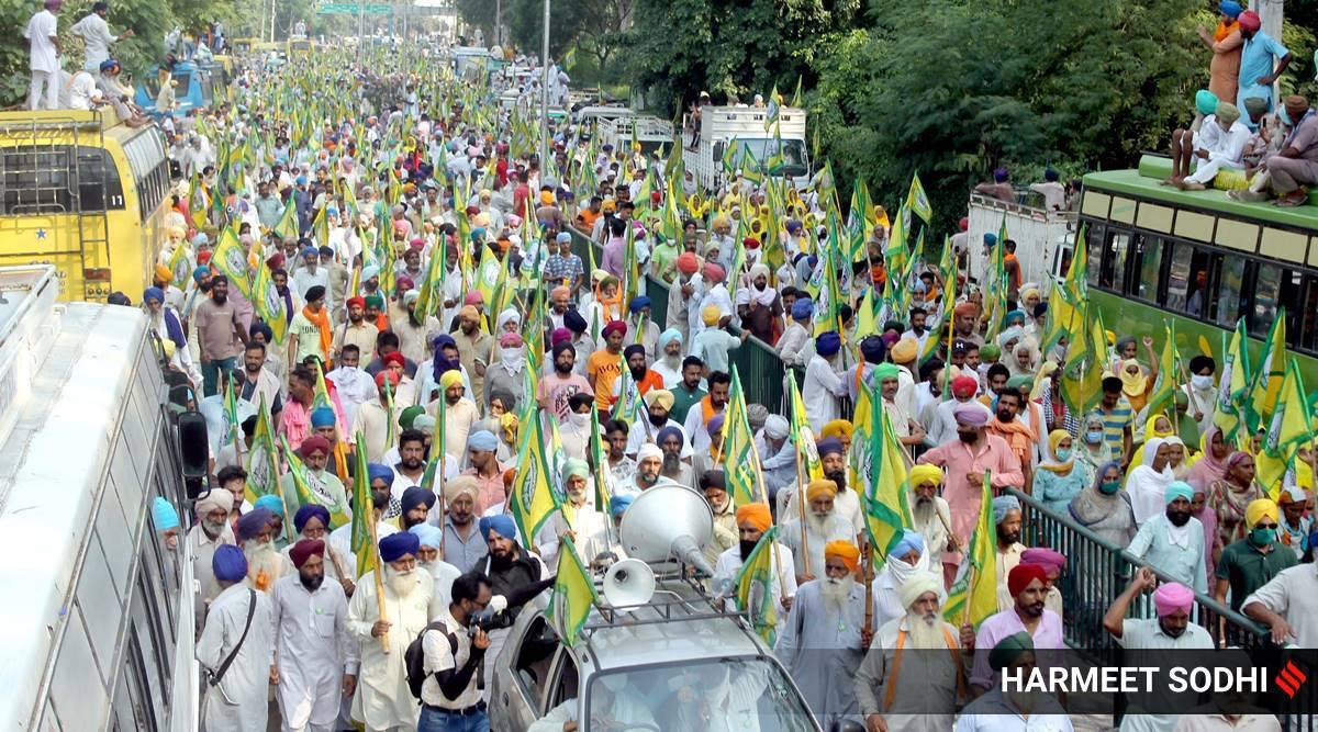 Image result for pinjab demonstration against farm bills