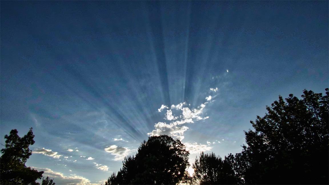 Sunbeam fan NR.jpg