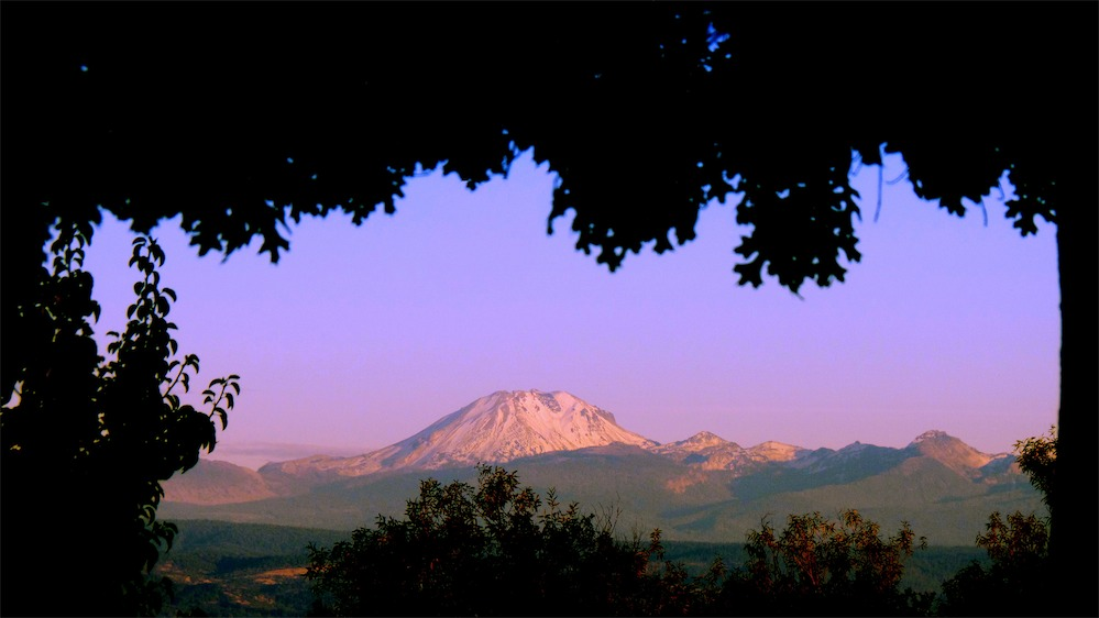 Lassen Through the leaves.jpg