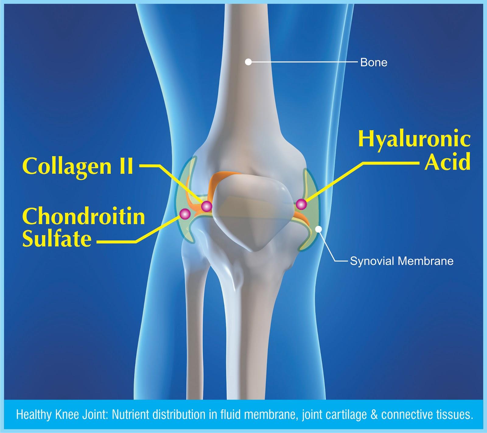 5-cong-dung-collagen