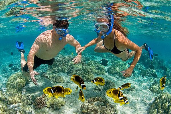 Thỏa thích lặn biển tại Maldives
