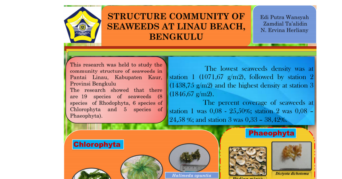 Structure Community Of Seaweeds At Linau Beach Bengkulu Pdf Google Drive