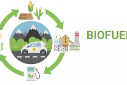 Biofuels for beginners | Definition, Type, Advantage