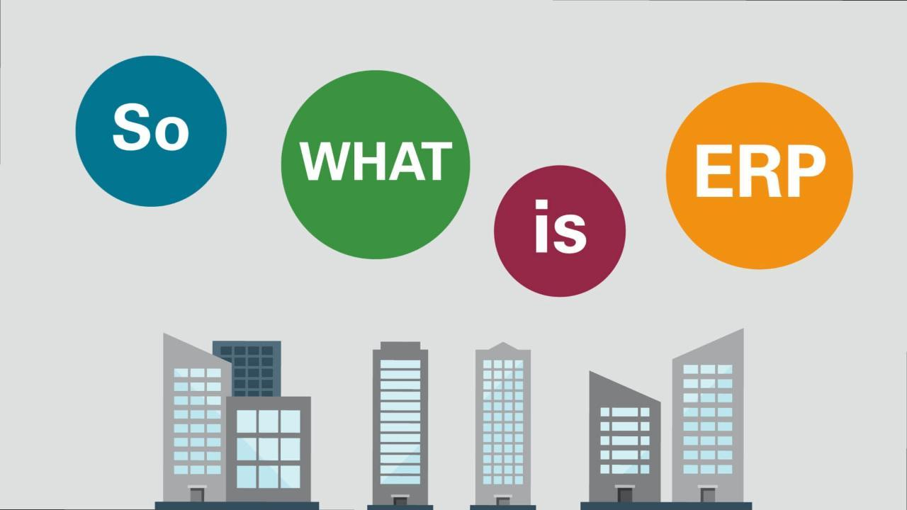 What is ERP?   Oracle