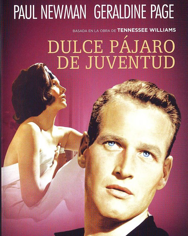 Dulce pájaro de juventud (1962, Richard Brooks)