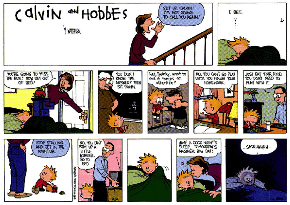 calvin and hobbes media.png