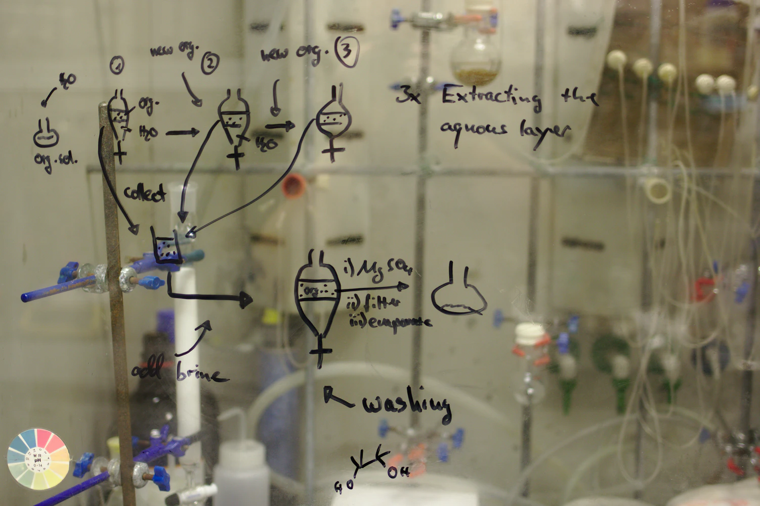 Amino Acid Students Guide: How to Study Biochemistry Efficiently