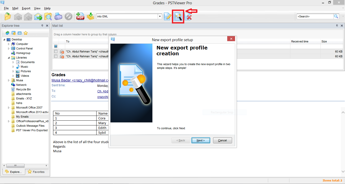 Screen shot shows the image of the New Profile wizard in EmlViewer Pro.