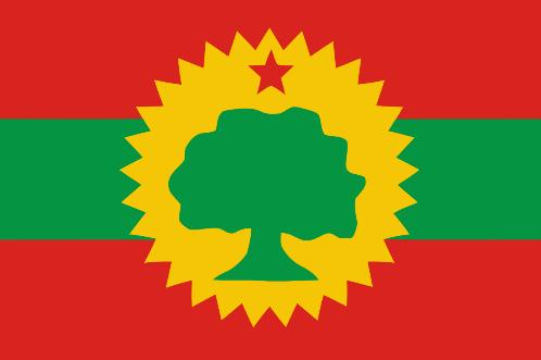 Image result for bilisummaa