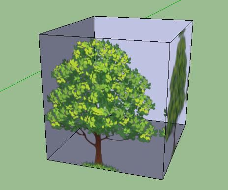 дерево1.png