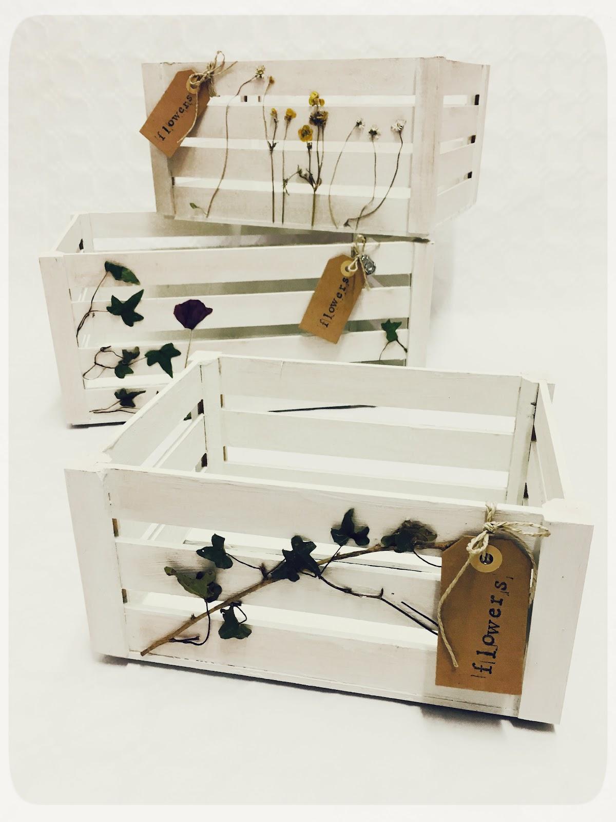 REinventa12_caja botanical C.jpg