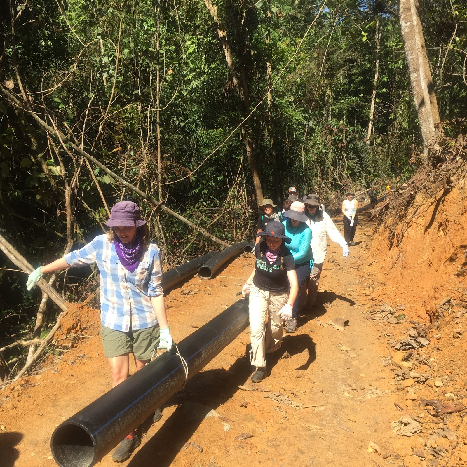 Heather and a team of students help to move a pipe