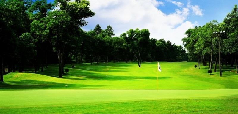 Sân tập Golf có rất nhiều ưu điểm và phù hợp với những người mới tập chơi