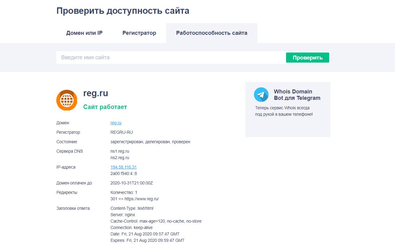 Проверить доступность сайта в REG.RU