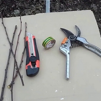 Инструменты для прививки деревьев