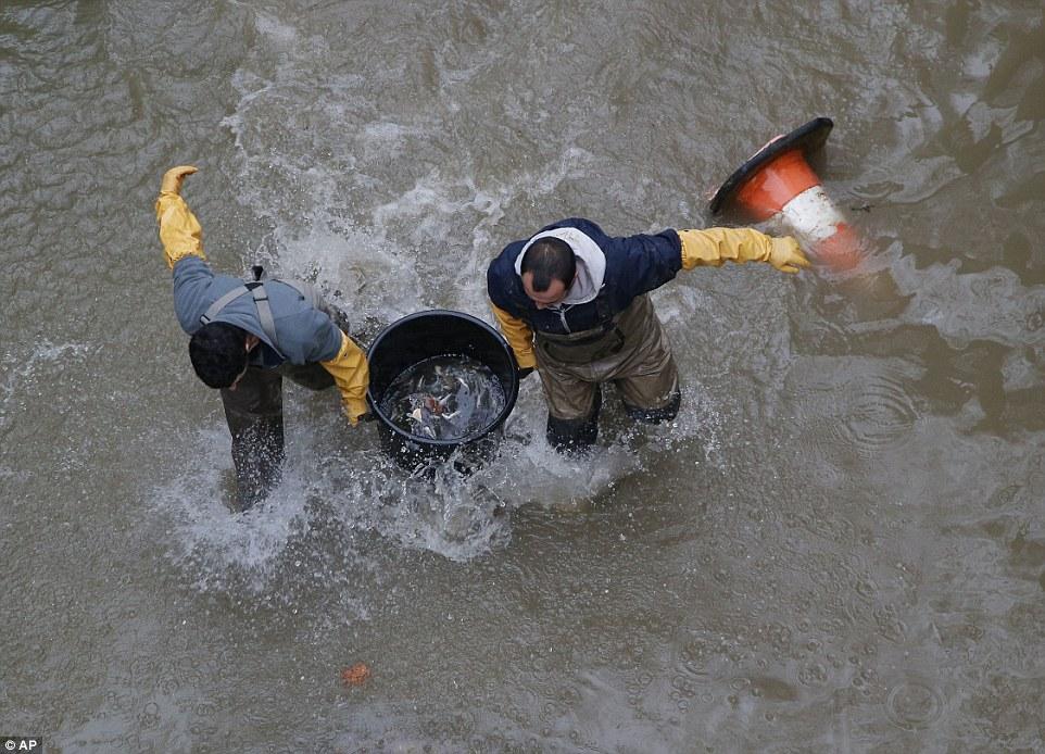 殘渣:市政工人在聖馬丁河運河裡舀滿了魚,因為運河在15年來第一次被排幹
