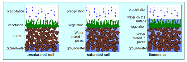 Central Metabolism (Flooded soils) - microbewiki