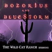 The Wild Cat Ranch Sessions