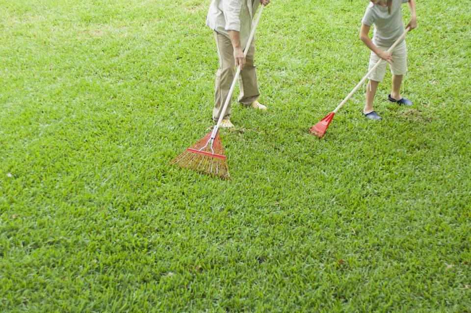 https://mydecorative.com/wp-content/uploads/2018/09/leave-grass-clippings-on-the-lawn.jpg