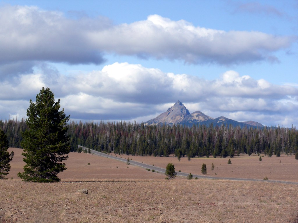 The broad, scraggly meadow of Crater Lake's Pumice Desert.