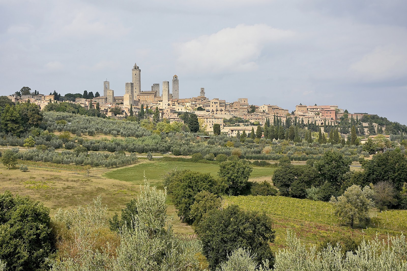 medieval brick towers in sam gimignano skyline city view from a distance and green tuscan fields landscape in foreground