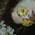 Assista Another World e se encante com a beleza deste vídeo !