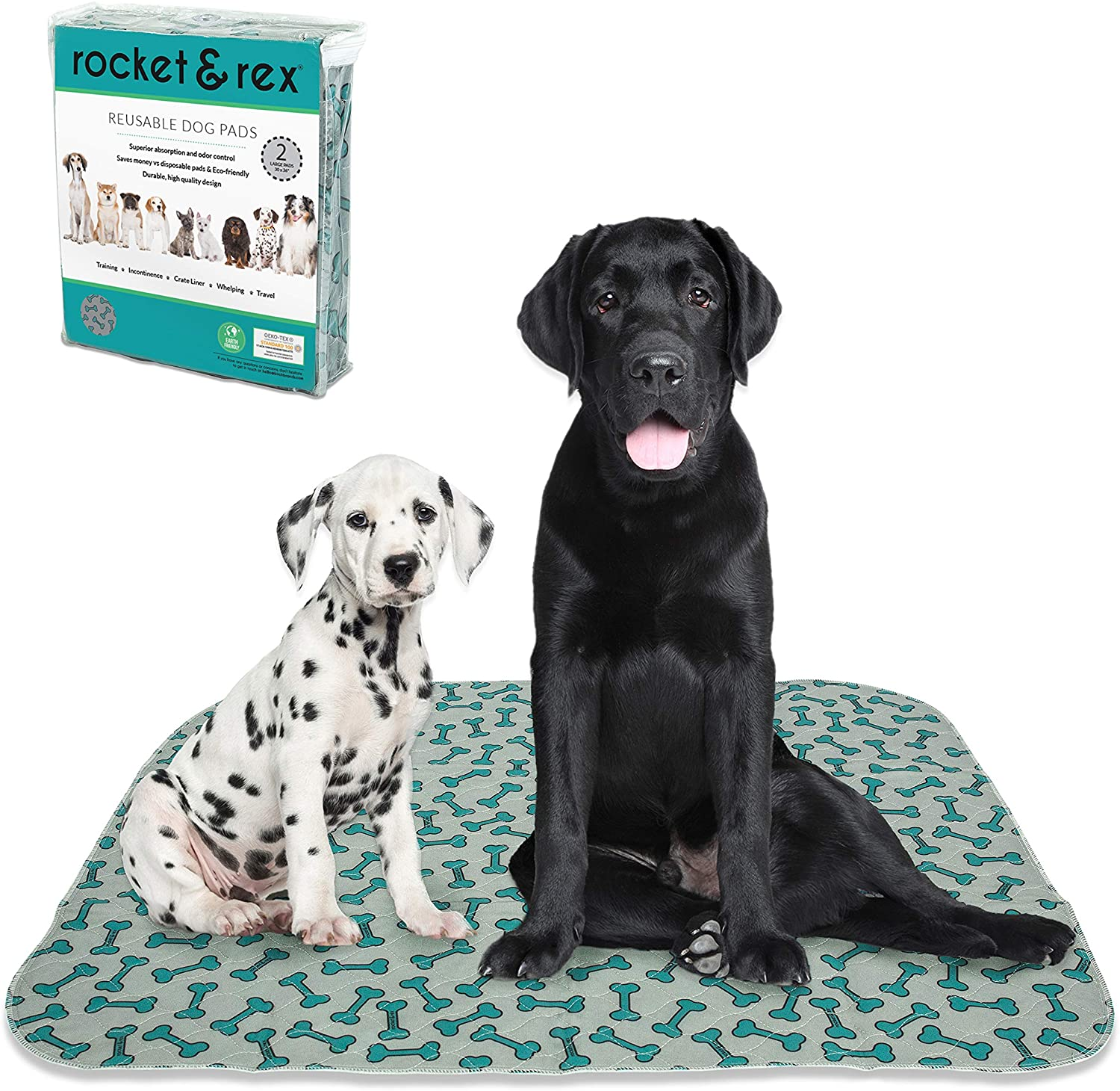 Two dogs sitting on a washable puppy pad