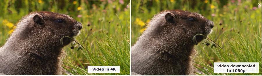 4k-vs-downscaled-to-1080p