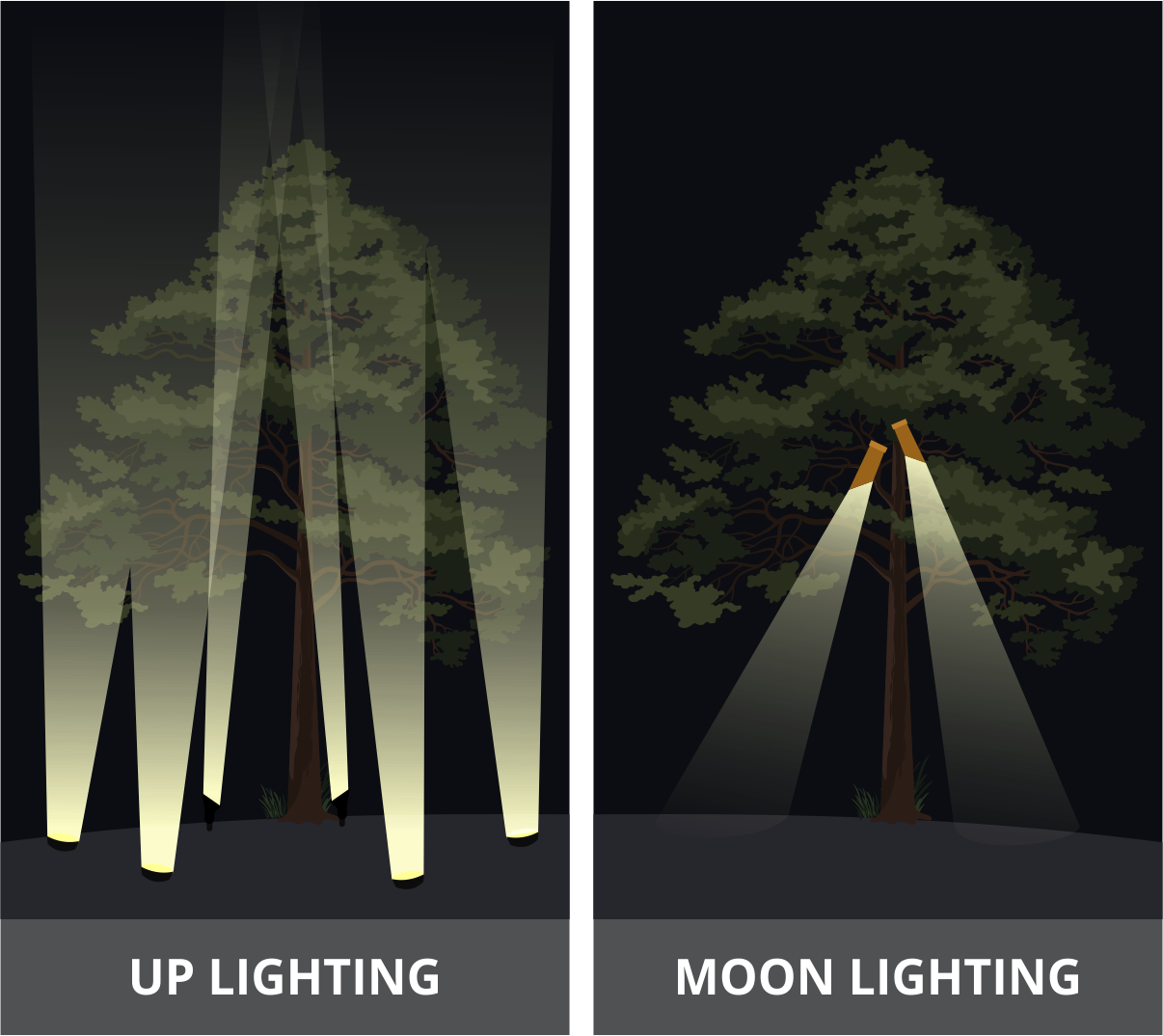 Illustration showing differences in up lighting and moon lighting